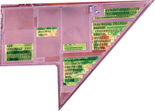 ndvi-plant-health-bins